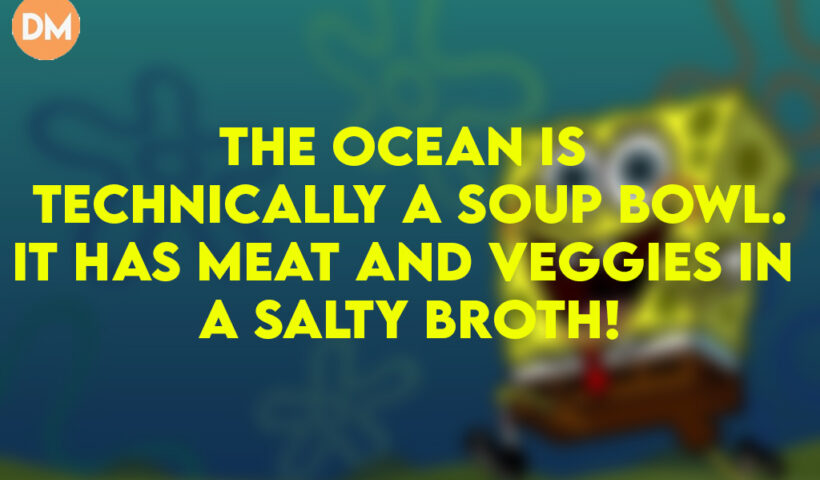 The ocean is technically a soup bowl.It has meat and veggies in a salty broth!